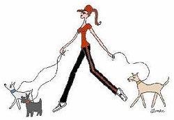Lavorare come dog-sitter ed educatore cinofilo